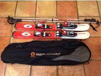 Salomon blade skis bag and poles