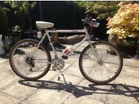 Dawes mountain bike £100