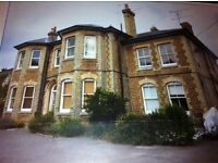 Beautiful victorian ground floor apartment; parking; private patio walk to town and mainline station