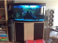 180 litre dome fronted aquarium tank and fish