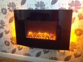 Electric fire with curved glass front