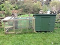 hen house/dog kennel with run