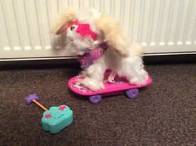 Trixie the skateboarding pup