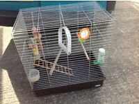 Large bird cage , cockatiel , parrot £35