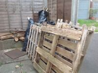 Wood and old pallets free to collector.