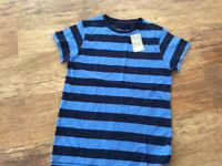 Next striped t shirt age 12