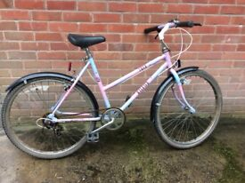 Ladies purple and white bicycle