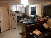 x2 good sized double rooms for rent in shared flat clifton, £400 PCs plus bills