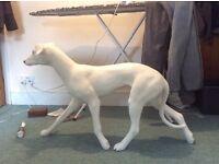 White dog - very low maintenance....
