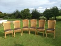6 dining/kitchen chairs