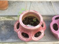 Two matching pink strawberry pots