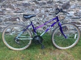 Ladies purple Raleigh bike