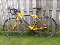 Apollo / Carrera TDF Road (racing) Bike - 54cm Great Condition