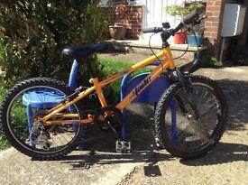 Boys 6-8 year old bike
