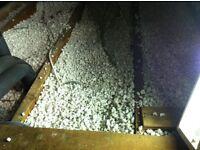 loft insulation (polystyrene bits)