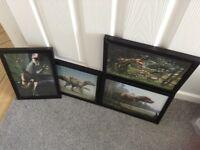 Set of four dinosaur prints