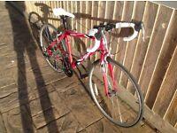 "Apollo Tempo Junior Unisex kids road racing bike red alloy frame 26"" 14 speed"