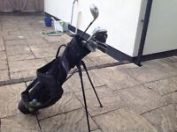 Ladies golf clubs with bag. Includes a driver.