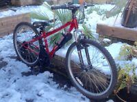 """Apollo XC24 Mountain bike 24"""" wheel"""