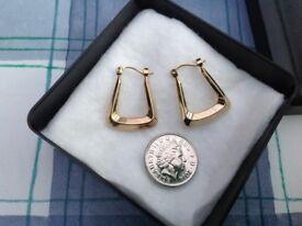 9ct creole earrings