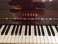 Yamaha upright walnut piano and stool