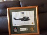 230 raf squadron print