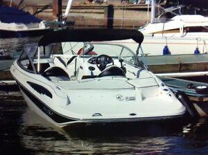 2009 Doral Boats Sunquest 202 BR État neuf !!!