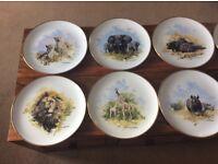 Set of David Shepherd Animal Plates as new