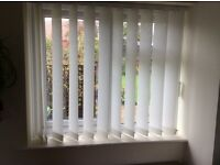 Three Vertical Window Blinds