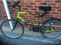 Gents bike in top condition 21 gears no time wasters please