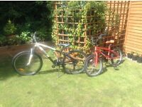 Two bikes for sale, 1 BMX and 1 mountain bike