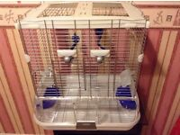 Bird Cage for Small Birds