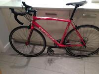 Specialized Allez 54cm racing bike