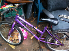 mountain bike purple NEED FIXING