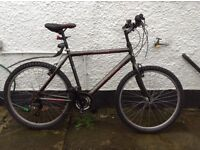 Mens Claud Butler Mountain bike