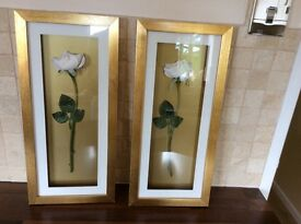 A pair of Next Gold framed pictures