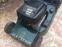 Hayter Harrier 48 lawn mower