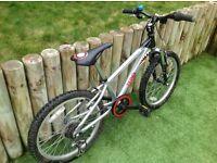 Boys Raleigh Bike