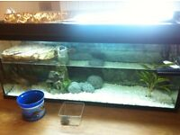 3ft Fish Tank with various accessories