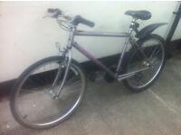 "Reece Exocet C100 Adult Mountain Bike 26"" wheels"