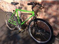 """Mens 60"""" SHOGUN bicycle"""