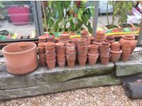 Clay plant pots for the enthusiastic gardener