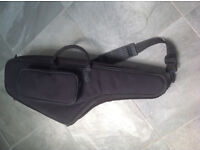 Soft padded carry case for alto sax