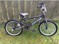 Raleigh burner 2.0 bmx bike. Needs some loving care, two flat tyres and rusted chain etc.x