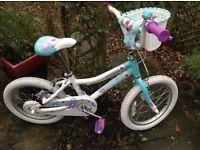Child's bike (Giant Pudd'n 16)
