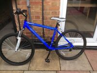 Mans Muddyfox free fall mountain bike 21 speed