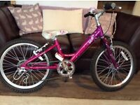 "Girls 20"" Raleigh Bike for Sale - Excellent Condition"