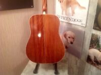Choice of left handed Washburn guitars one acoustic one acoustic electric