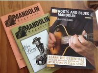 Steve James Roots and Blues Mandolin +2 Mandolin Magazine editions