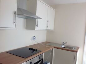 3 bed terrace house in Carmarthen close to centre